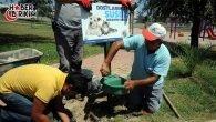 Kepez'de Hayvanlar Susuz Kalmayacak!