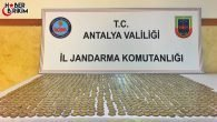 Antalya'da Sahte Para Operasyonu
