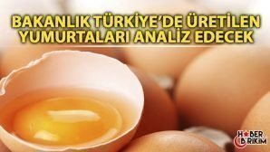 Türkiye'de Üretilen  Yumurtalar Analiz Edilecek