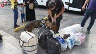 Türkiye Huzur Arife Uygulaması-2 Bilançosu – ANTALYA